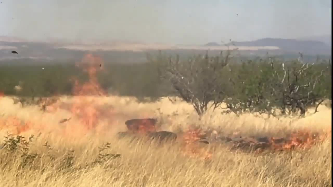 Video shows Arizona fire started with gender reveal party