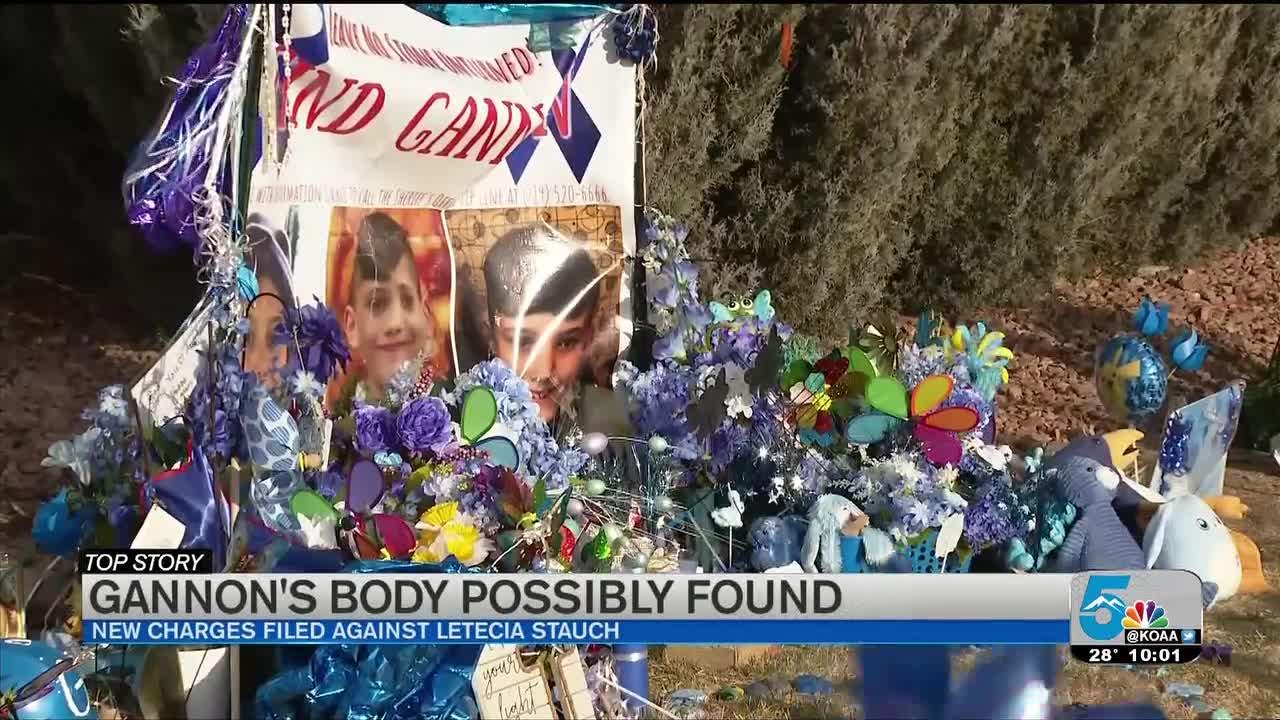 Gannon Stauch's remains allegedly found in Florida