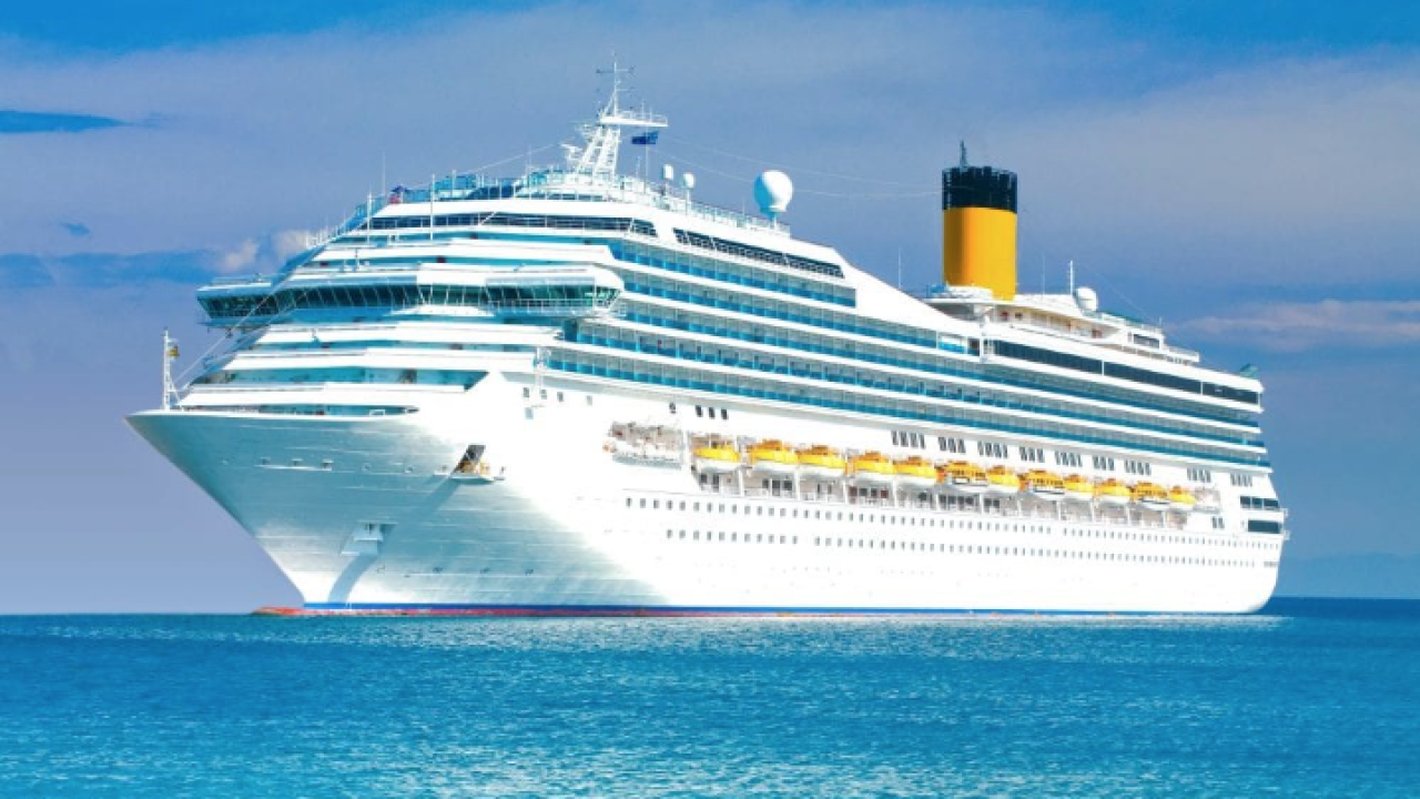 Health ministry to review Diamond Princess cases