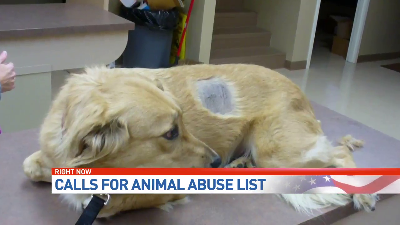 Petitions call for animal abuse registry