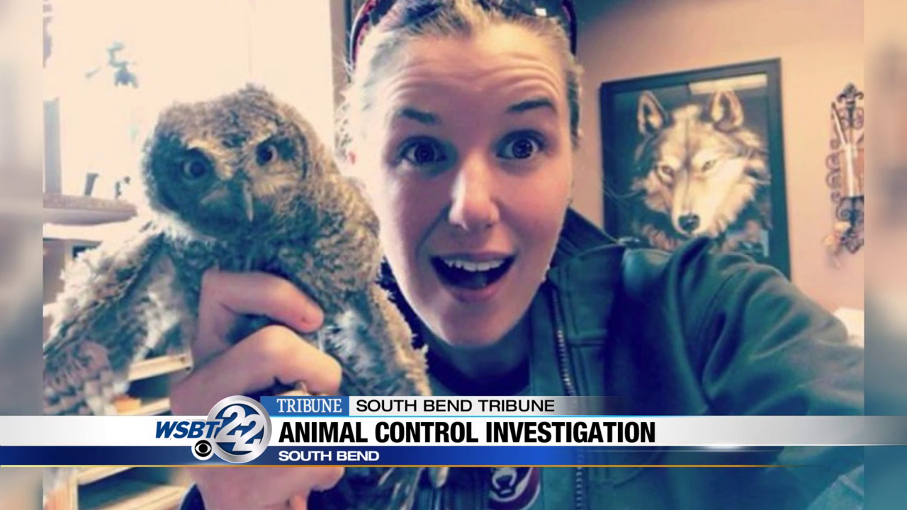 Animal Control manager facing disciplinary action over how she handled an owl