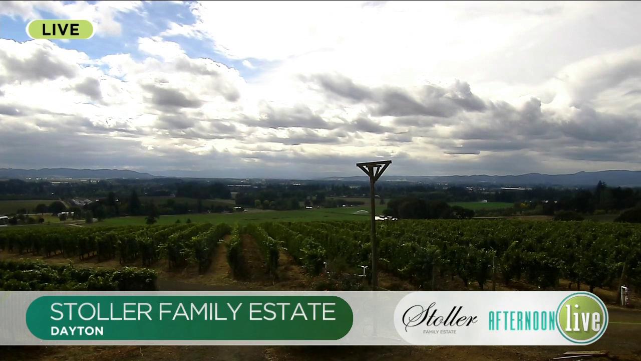 Harvest Season at Stoller Family Estate!