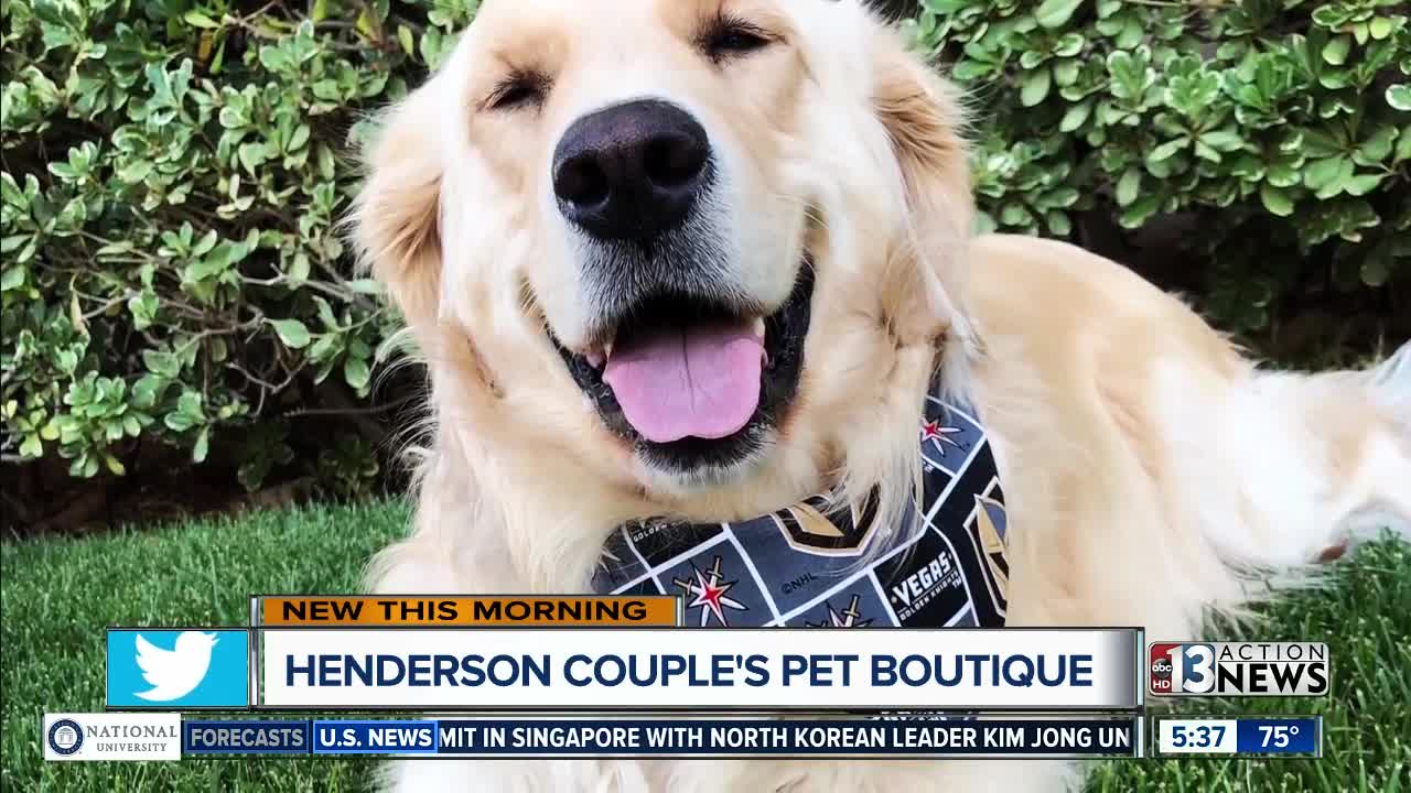 Henderson pet boutique selling Golden Knights pet apparel after dog  diagnosed with cancer aa1f7e020