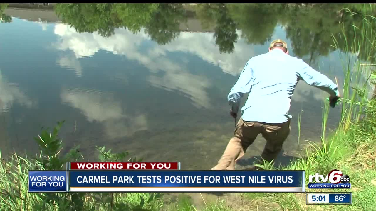 DeKalb health officials report first West Nile -positive mosquitoes in 2019