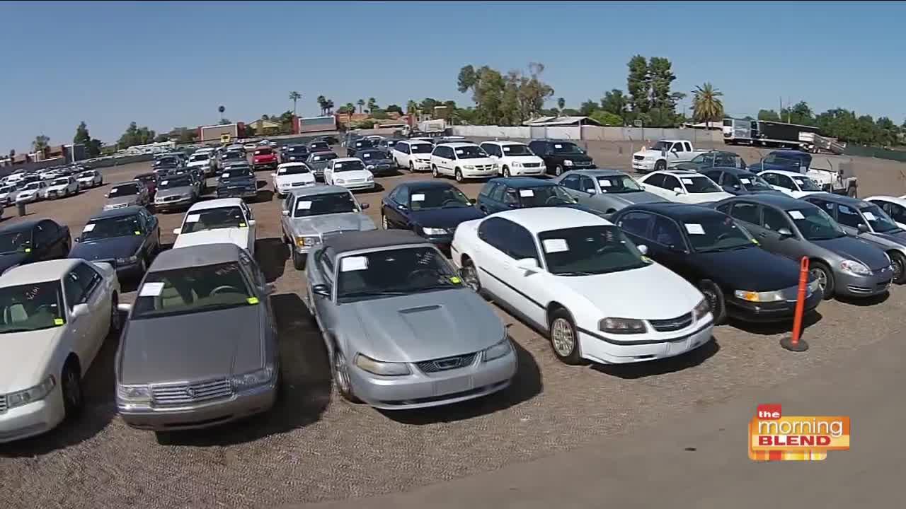 Sierra Auto Auction >> Sierra Auction Arizona S Largest Public Auction House