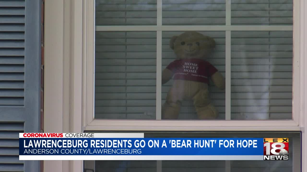 Teddy bears in windows to cheer up kids during lockdown