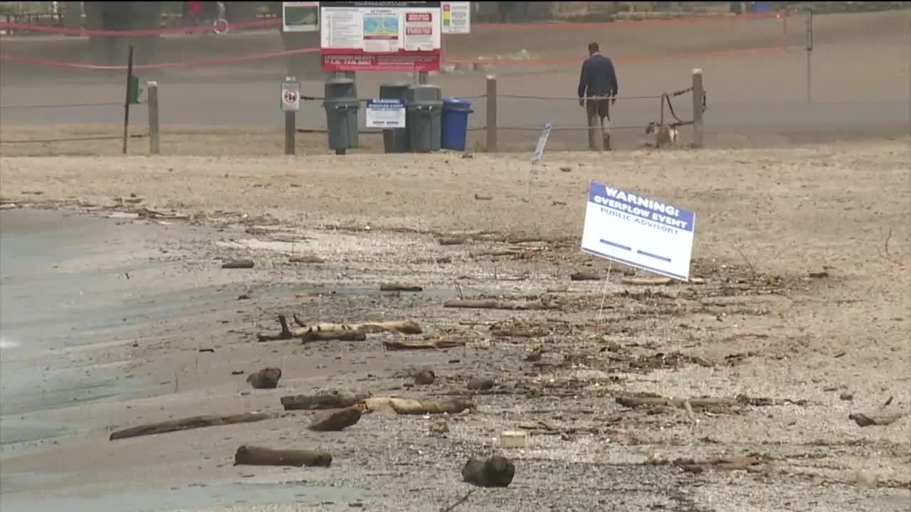 Rain causes raw sewage overflow at Edgewater Beach