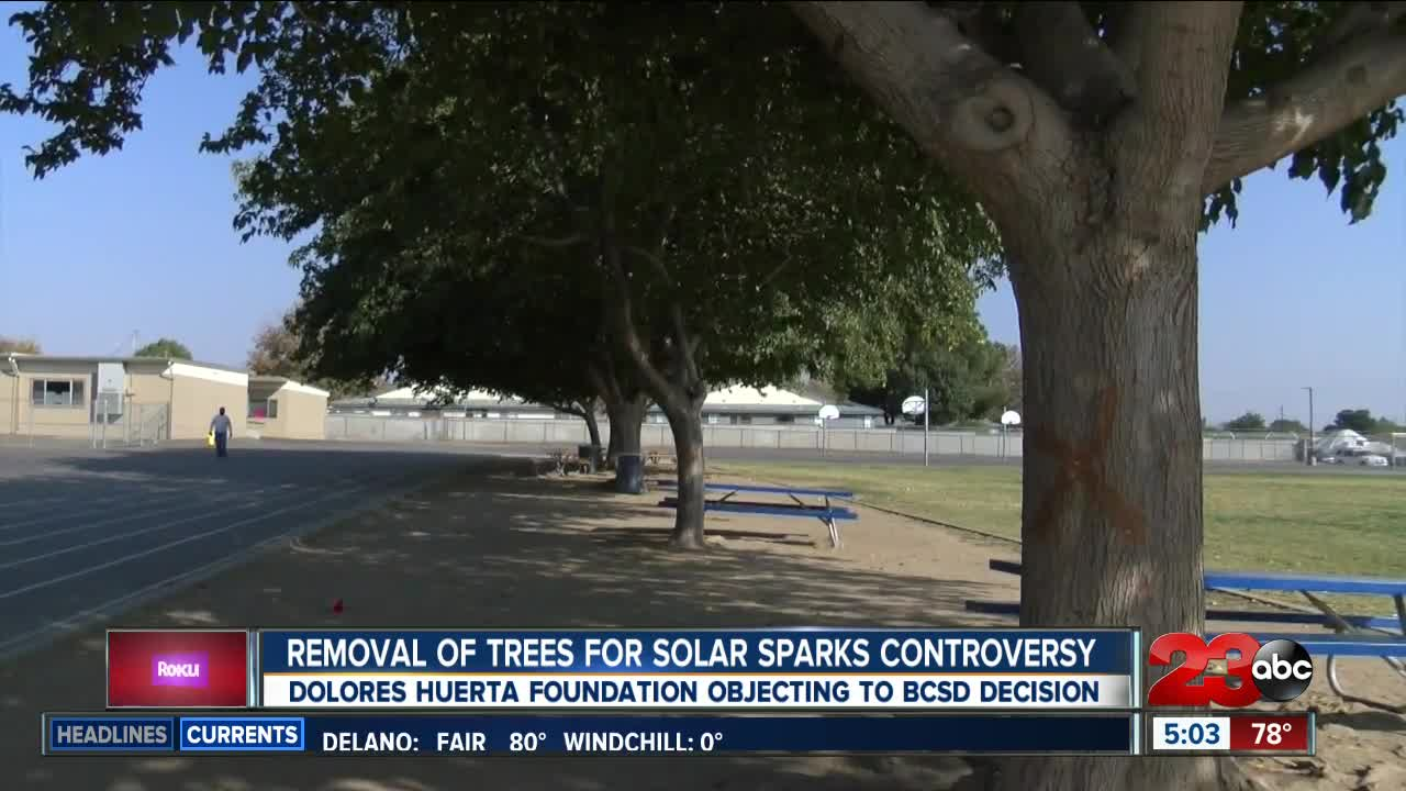 Controversy Over Panels Decision On >> Removal Of Trees At Elementary School For Solar Panels