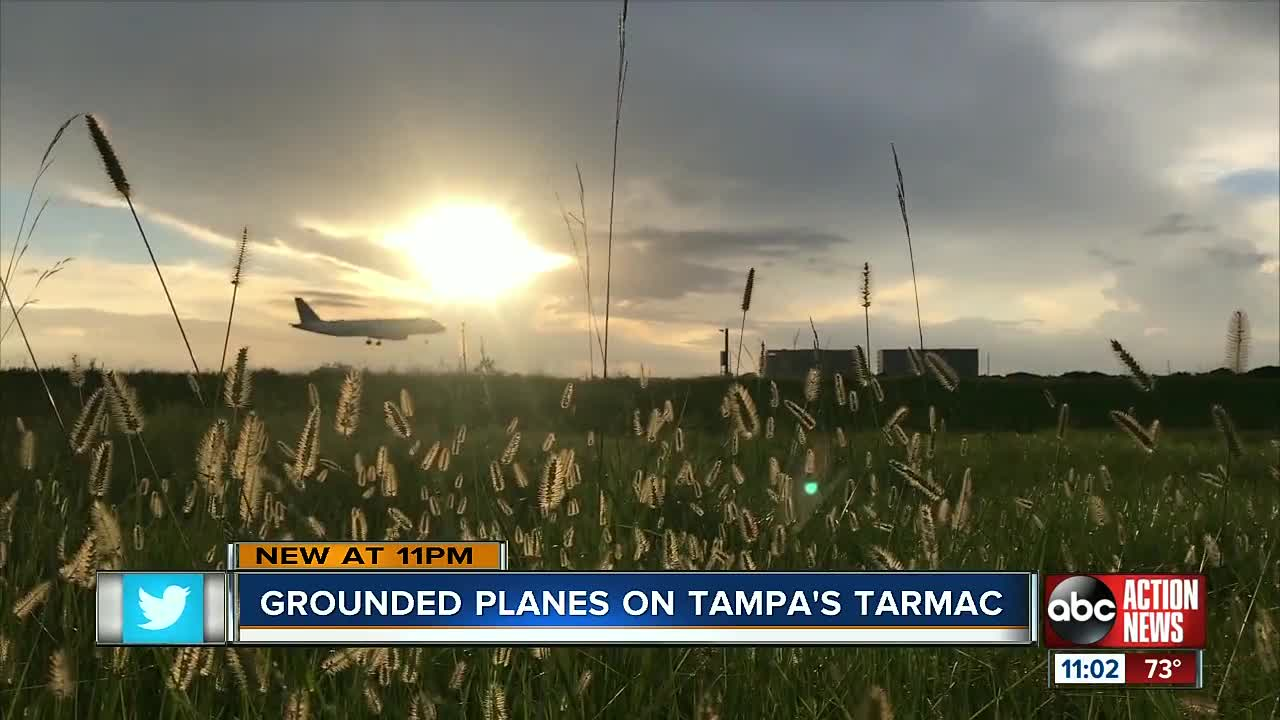 Three flights were canceled at Tampa International Airport because of President Donald Trump's order to ground all Boeing 737 Max 8 and Max 9 aircraft