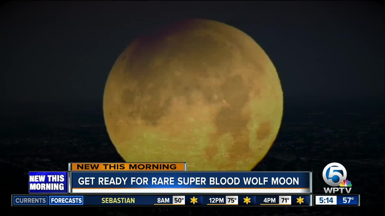 blood moon viewing fl - photo #49