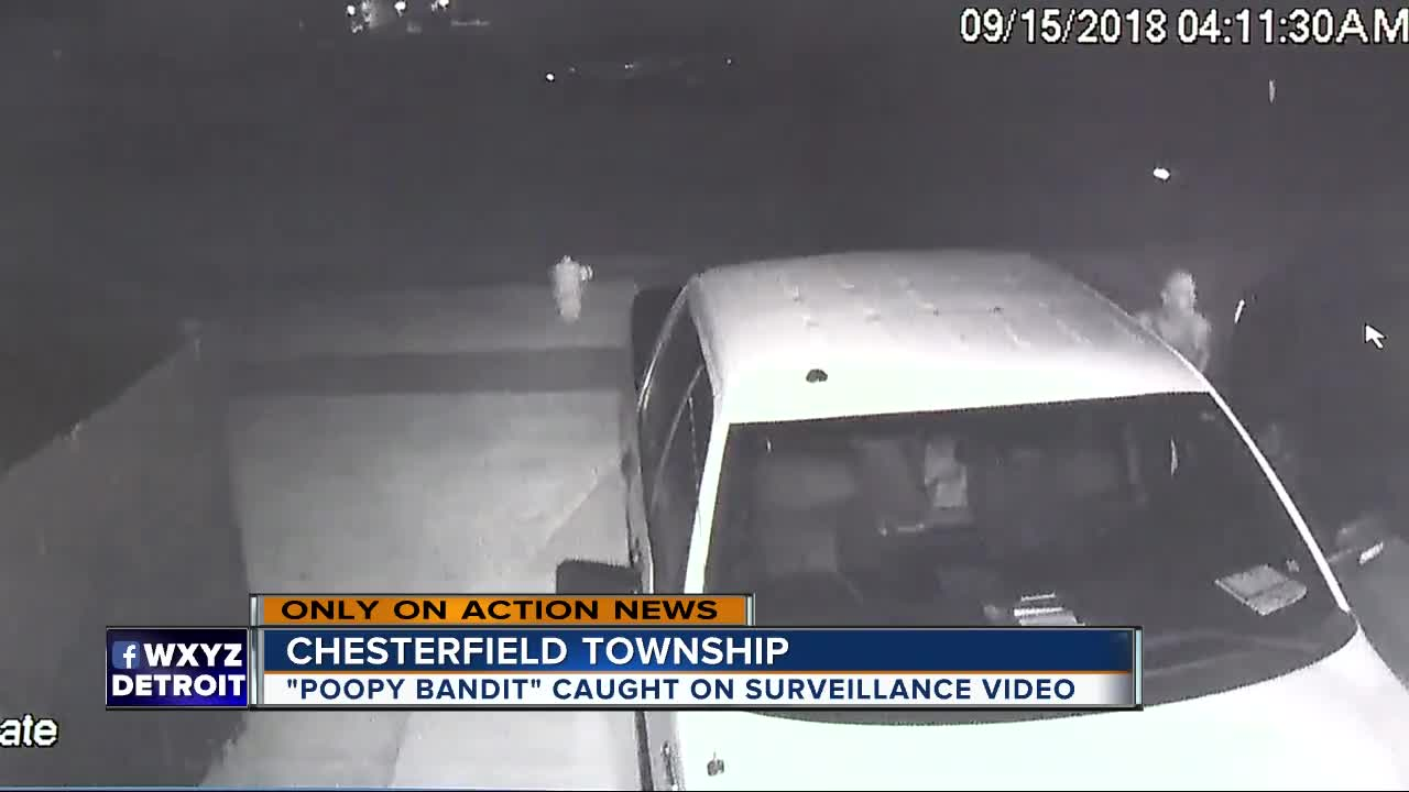 Suspect steals bike, rummages through cars before pooping on