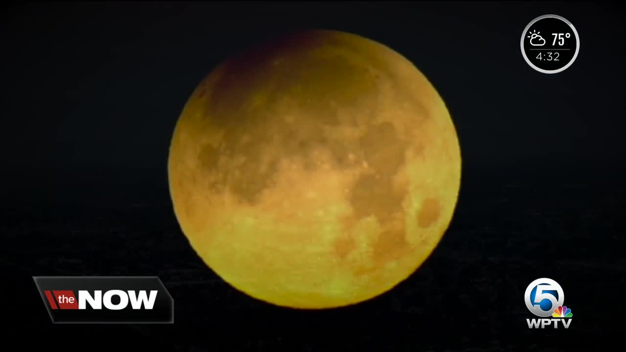 Super Blood Wolf Moon visible in South Florida tonight