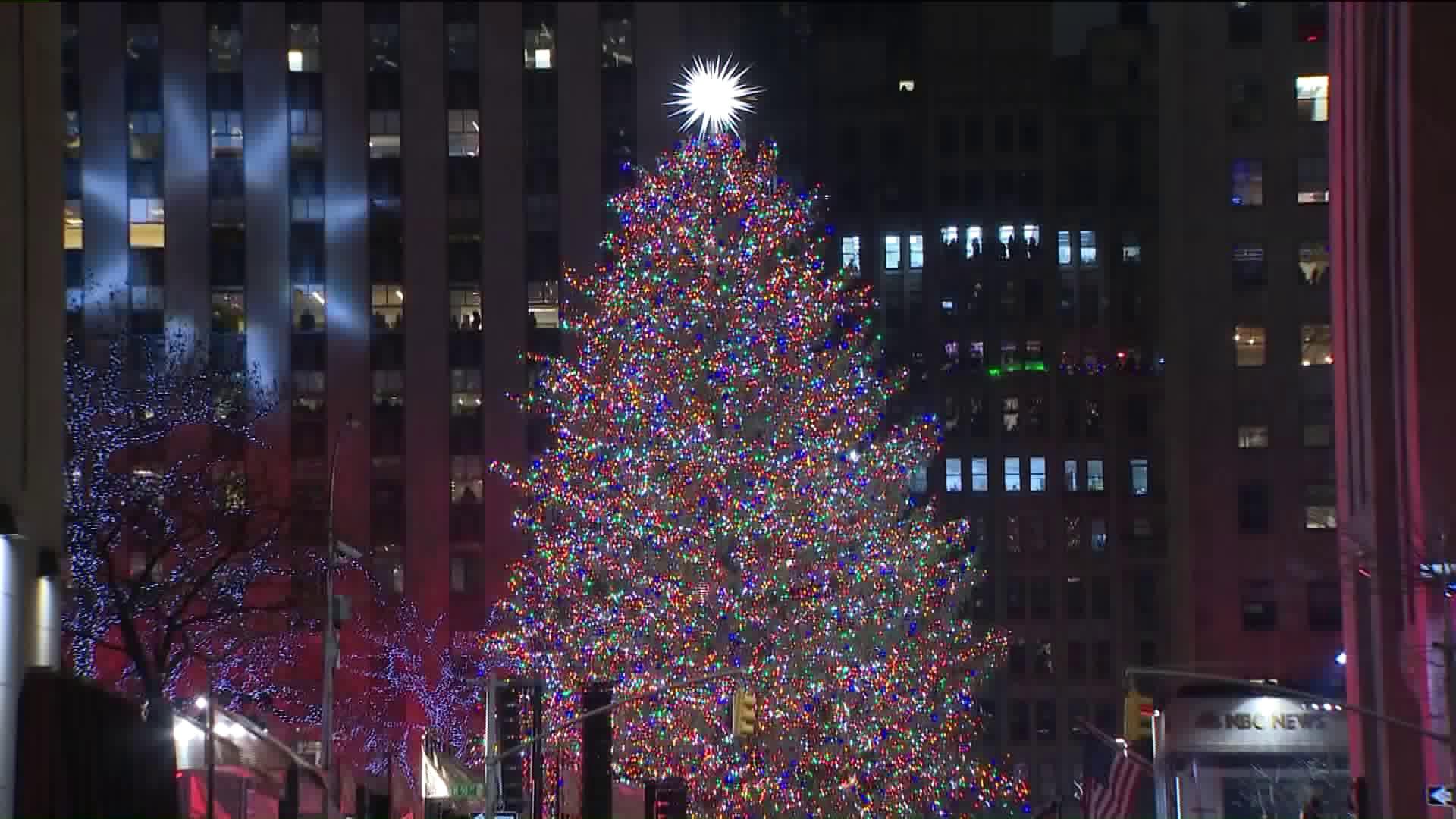 Tis The Season Rockefeller Center Christmas Tree Lights Up