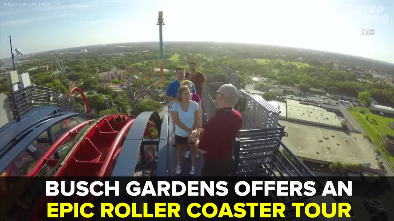 Busch Gardens offers behind-the-scenes roller coaster tours