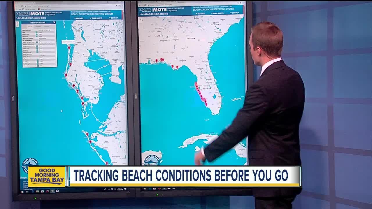 Check Florida beach conditions before you go