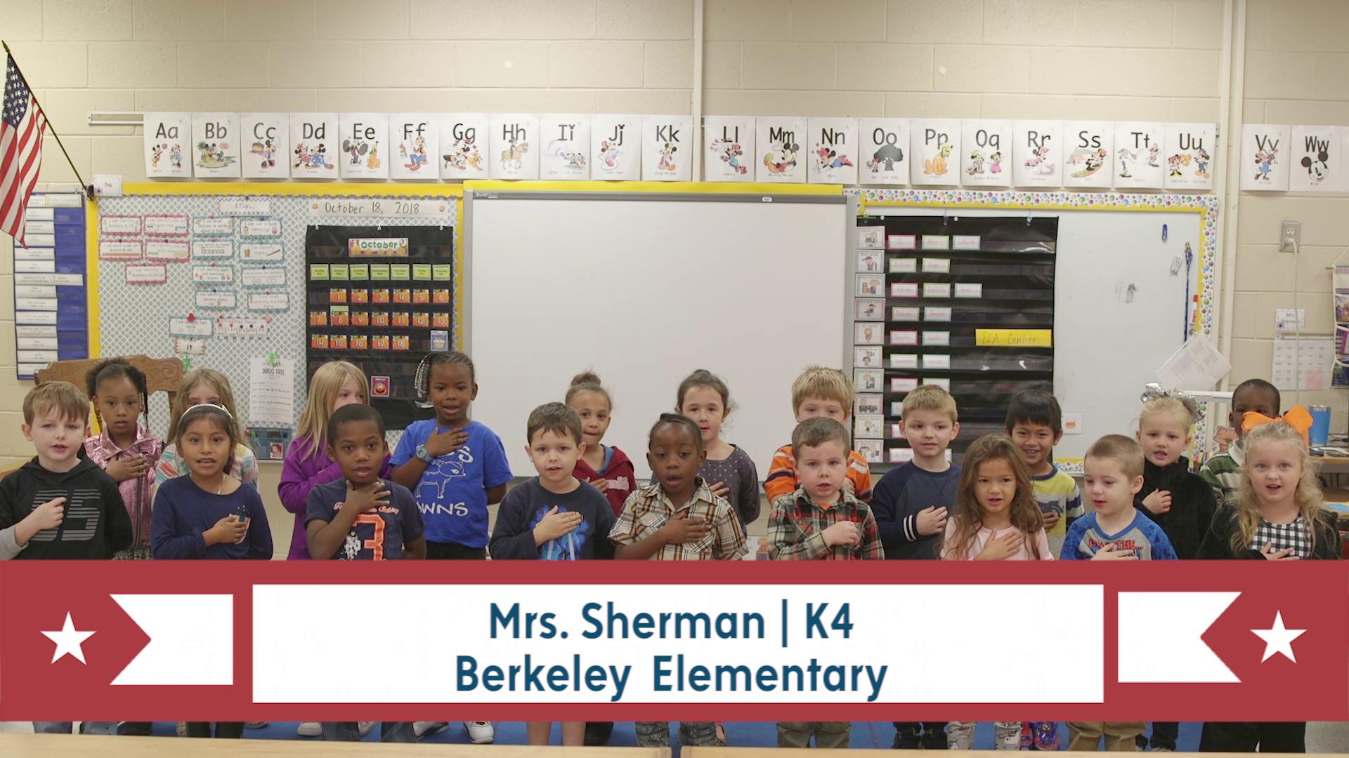 PLEDGE OF ALLEGIANCE for March 13, 2019