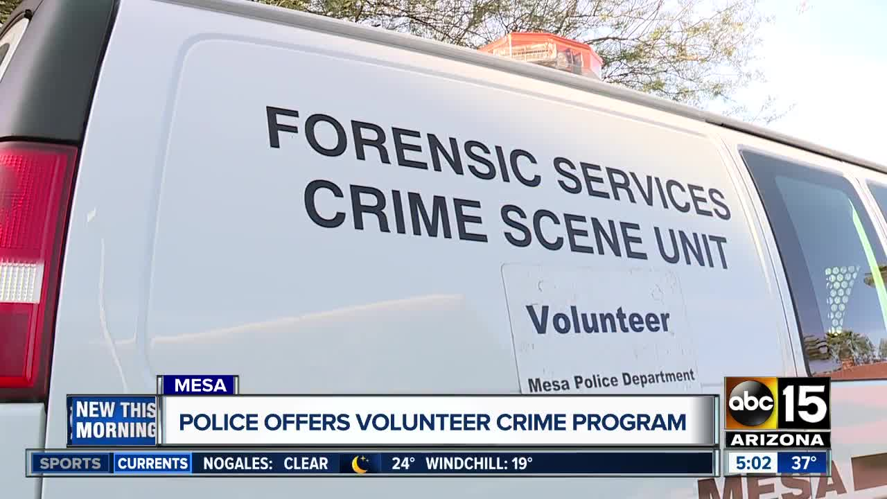 Crime Scene Volunteers How Mesa Police Recruit Help With Solving Crimes