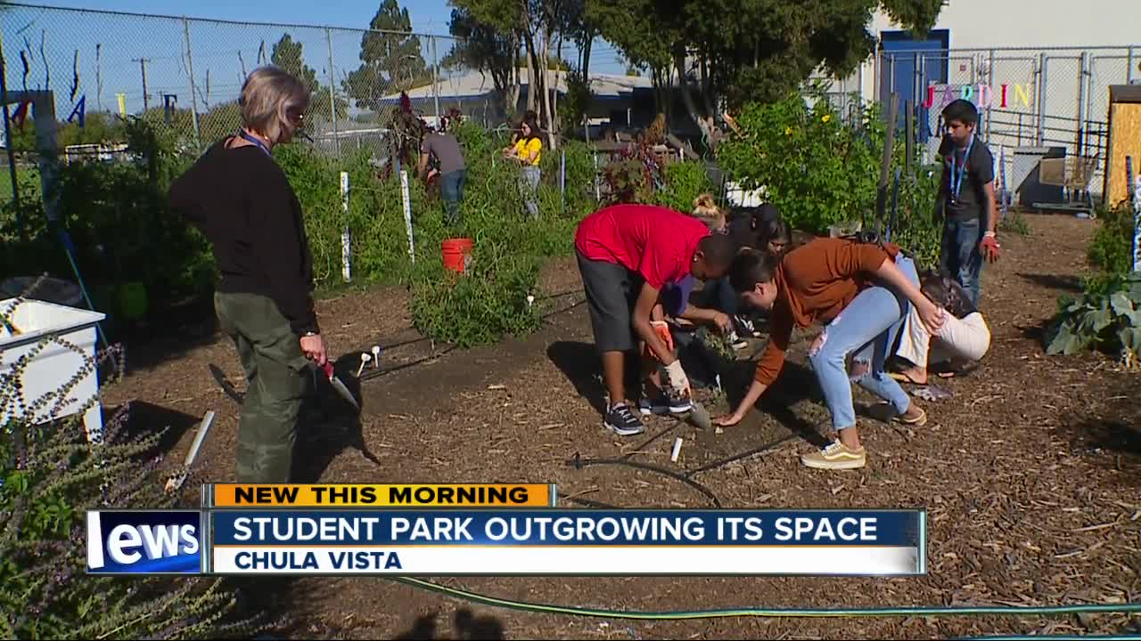 Chula Vista High School students hope grant can keep their garden ...