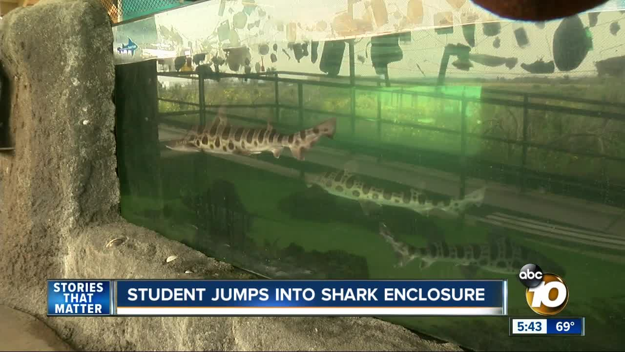 Student jumps into shark tank at Chula Vista aquarium