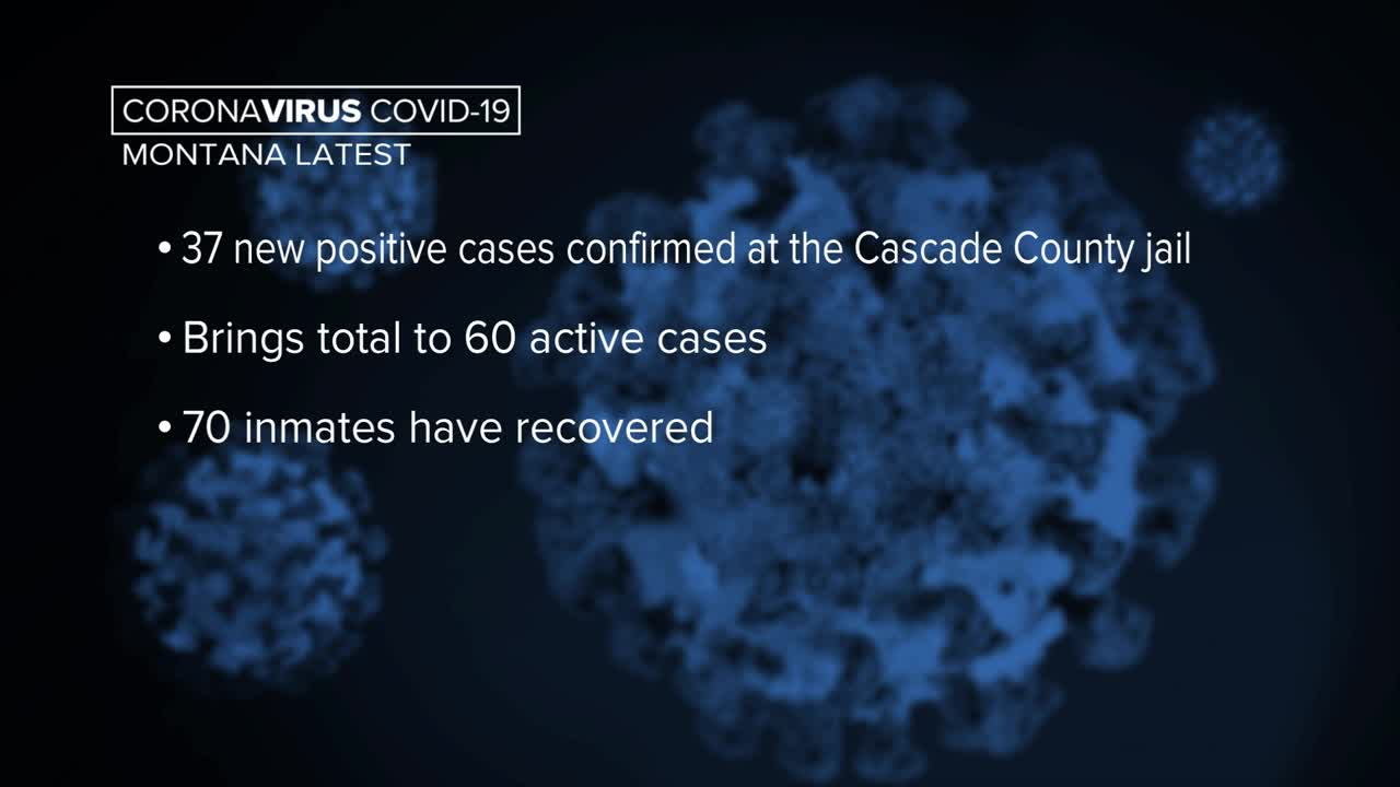 BC health officials announce 317 new coronavirus cases since Friday