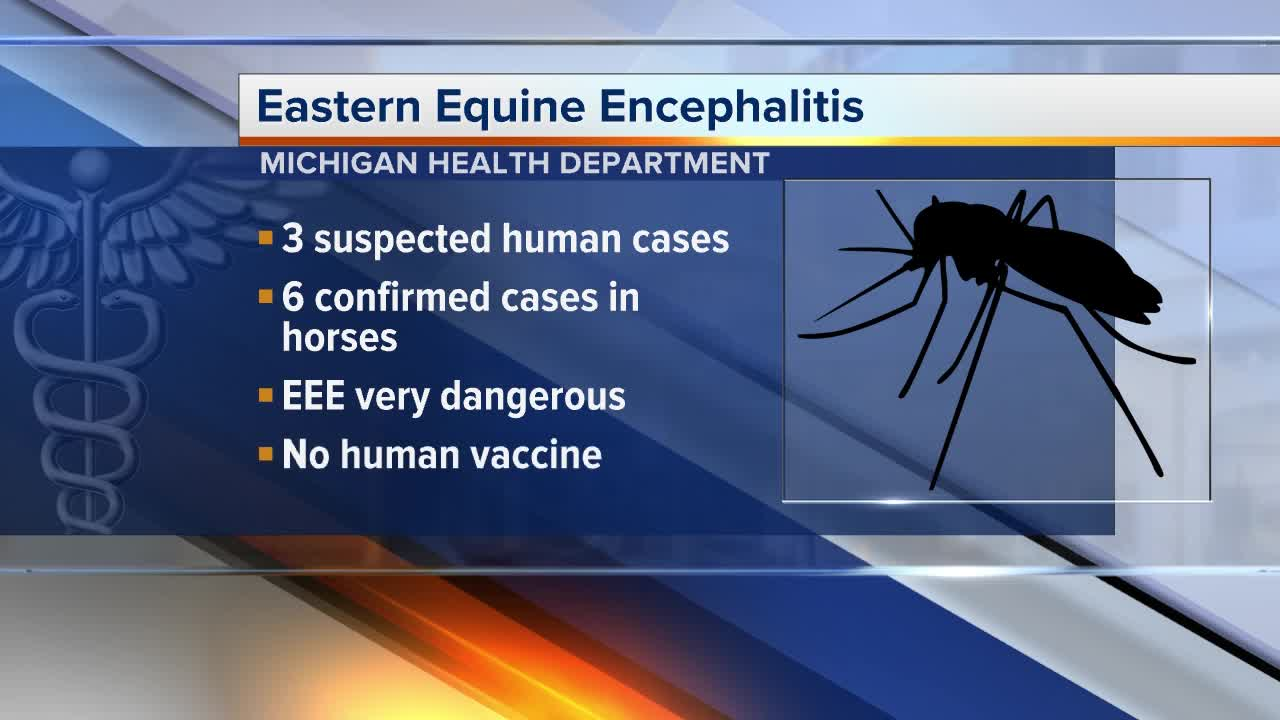 Eastern Equine Encephalitis Found in Chester, Killingworth Mosquitoes