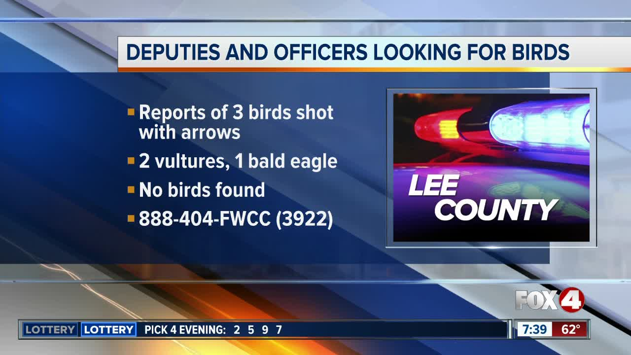 FWC investigating reports of birds shot with arrows in Lee