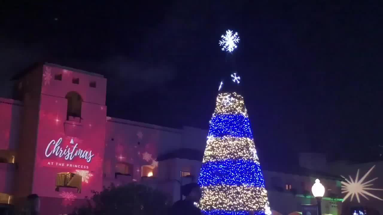 Christmas At The Princess: 4.5 Million Lights To See At