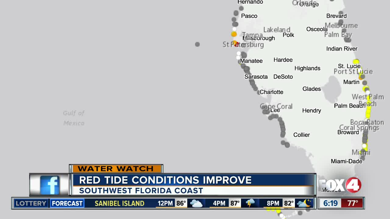 Water Samples Find No Red Tide In Southwest Florida
