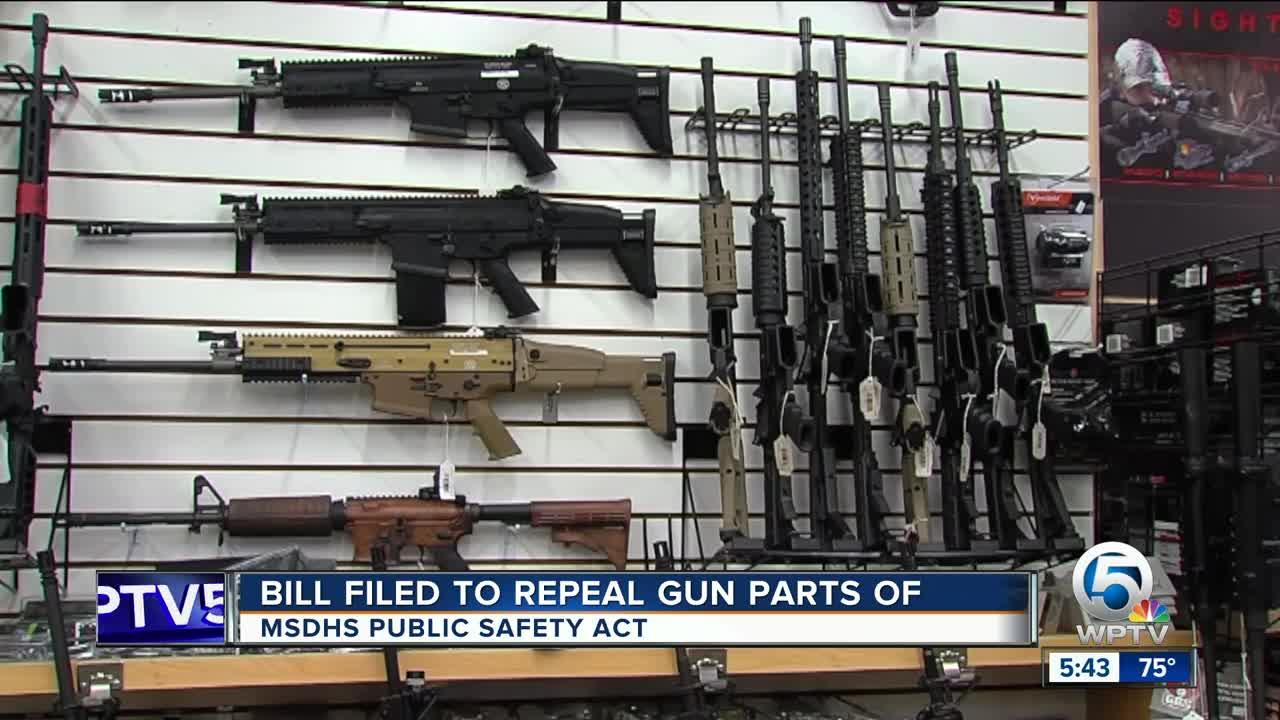 Lawmaker wants to repeal gun components of Marjory Stoneman