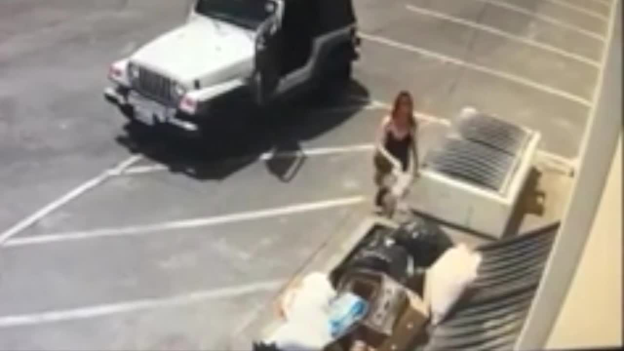 Video caught woman dumping 7 puppies behind California store
