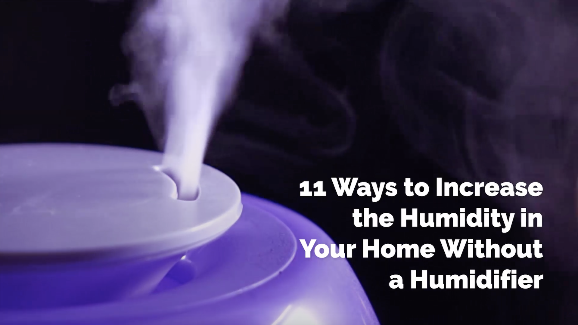11 Diy Ways To Increase The Humidity In Your Home Simplemost
