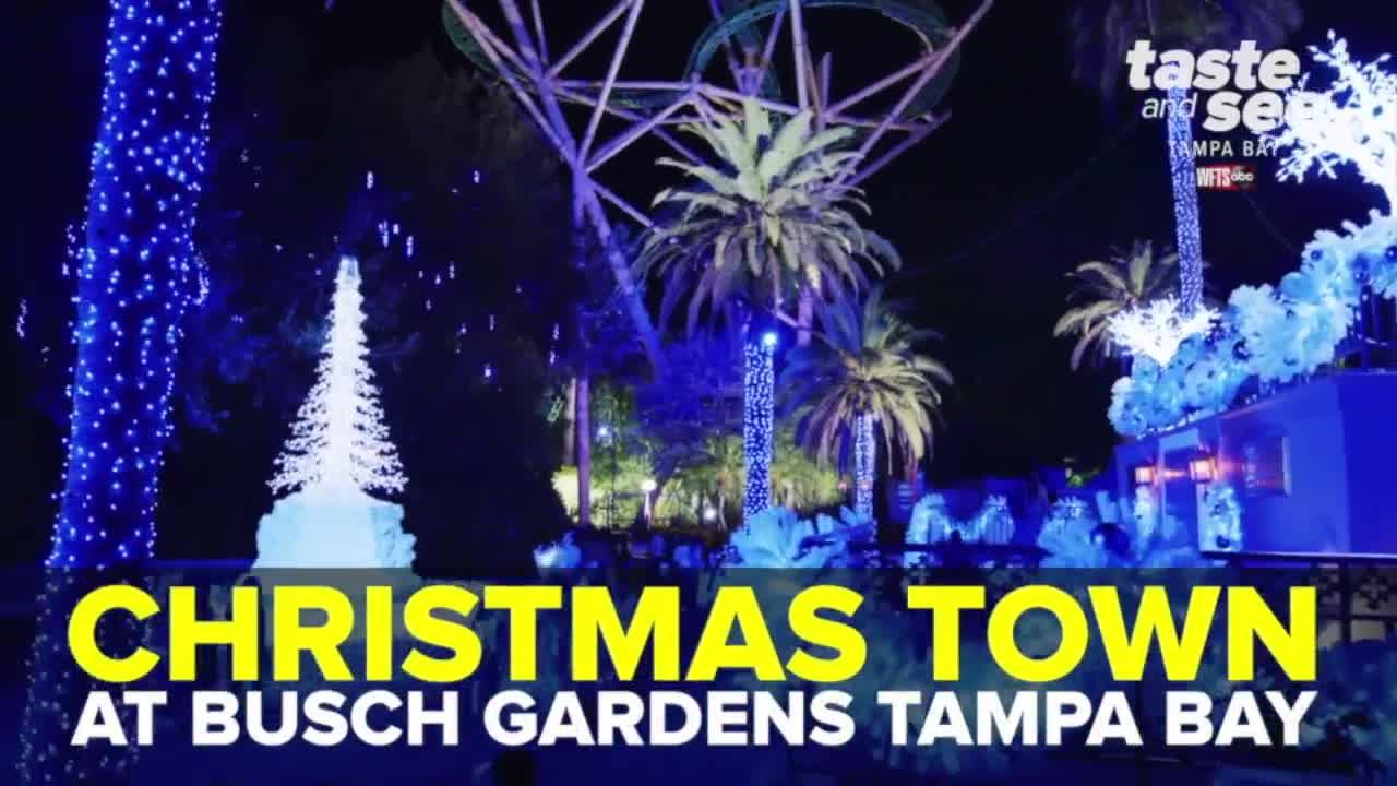 Christmas Town Busch Gardens Tampa 2020 Christmas Town at Busch Gardens Tampa Bay showcases millions of lights
