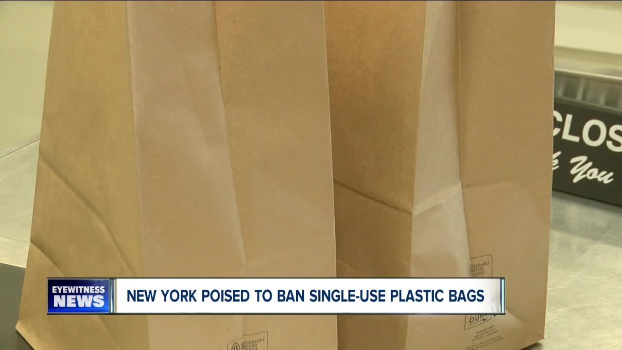 New York to ban single-use plastic bags