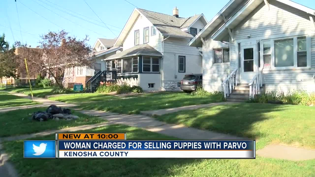 woman charged with animal mistreatment after admitting to