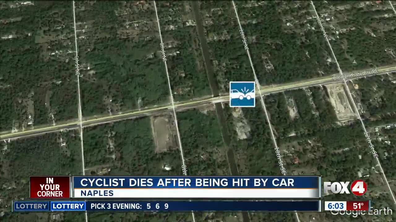 Naples bicyclist hit and killed by car while riding in bike lane