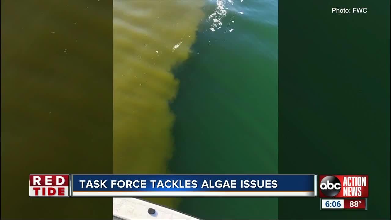 Blue-green Algae Task Force aims to trounce algae growth in