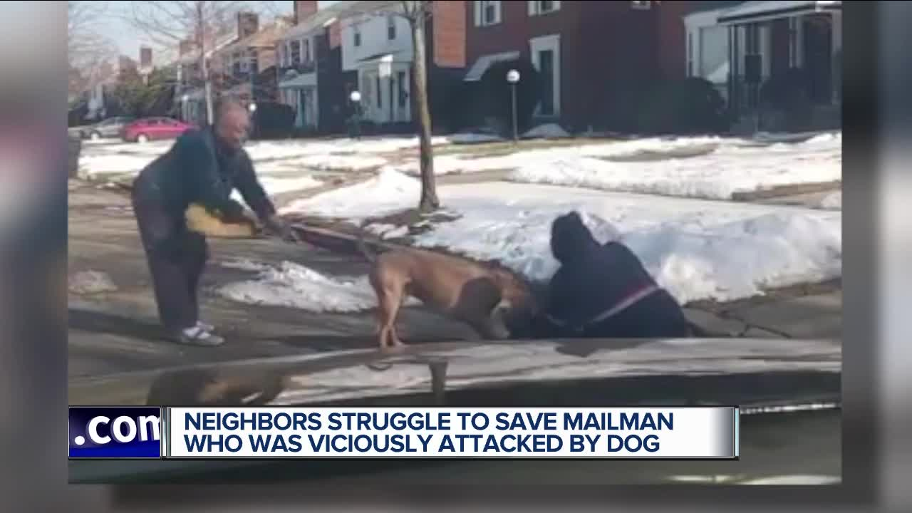 Video shows dog viciously attacking mail carrier in Detroit