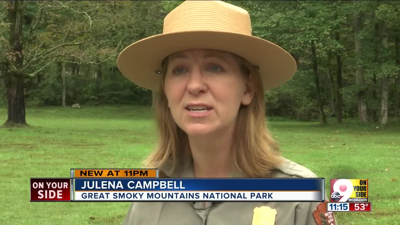 Cleves woman missing in Great Smoky Mountains National Park