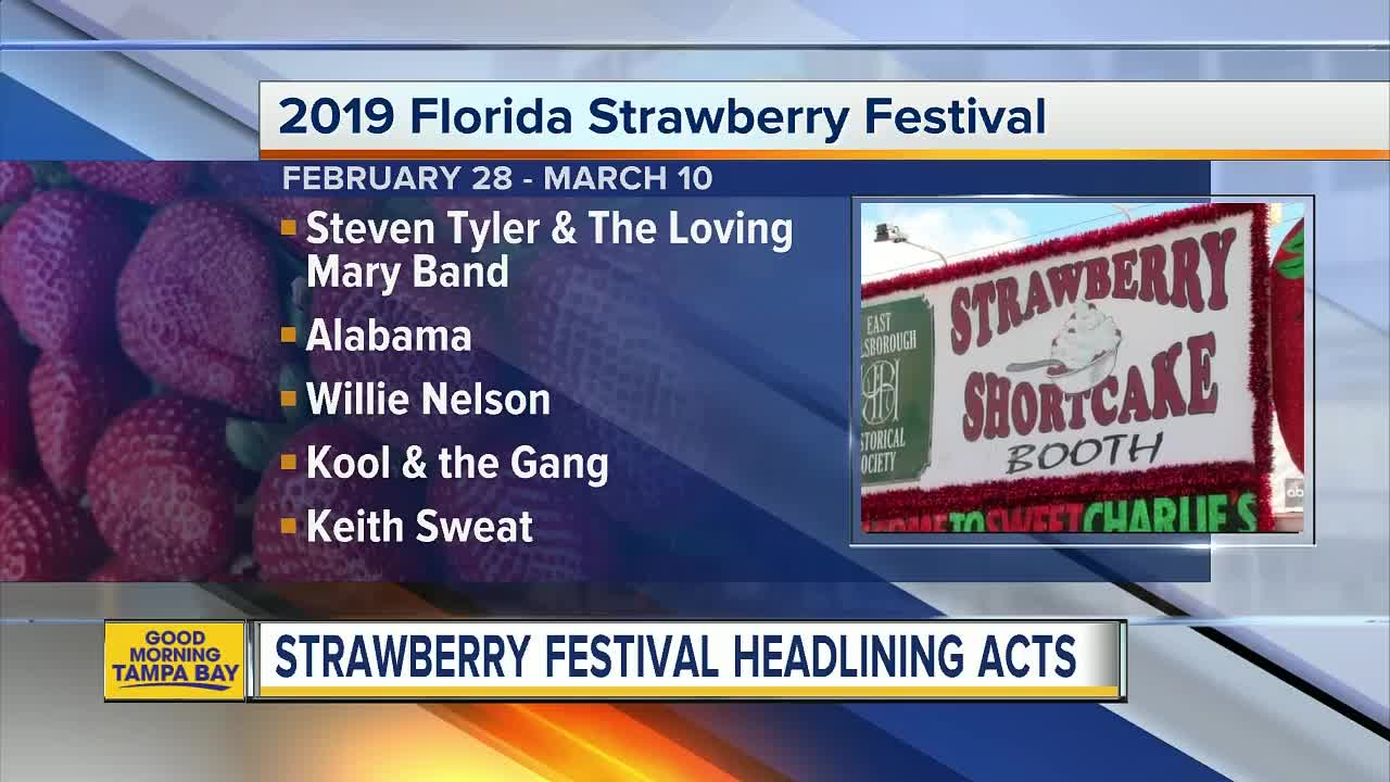 Strawberry Festival Pictures 2019