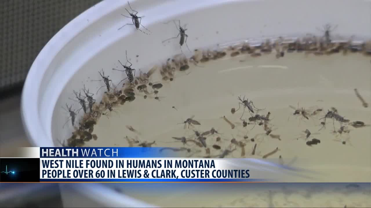 First human West Nile Virus cases in Montana for 2019