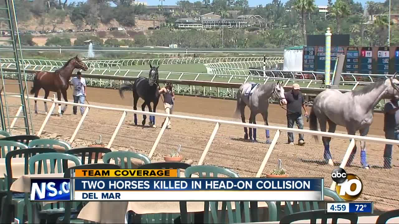 2 horses killed in collision during training at Del Mar