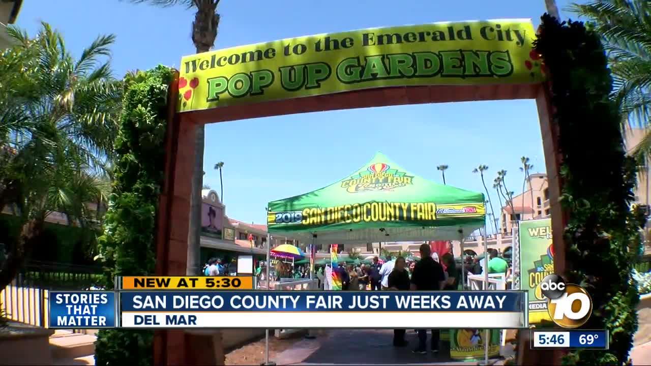 San Diego County Fair food adopts Wizard of Oz theme for 2019