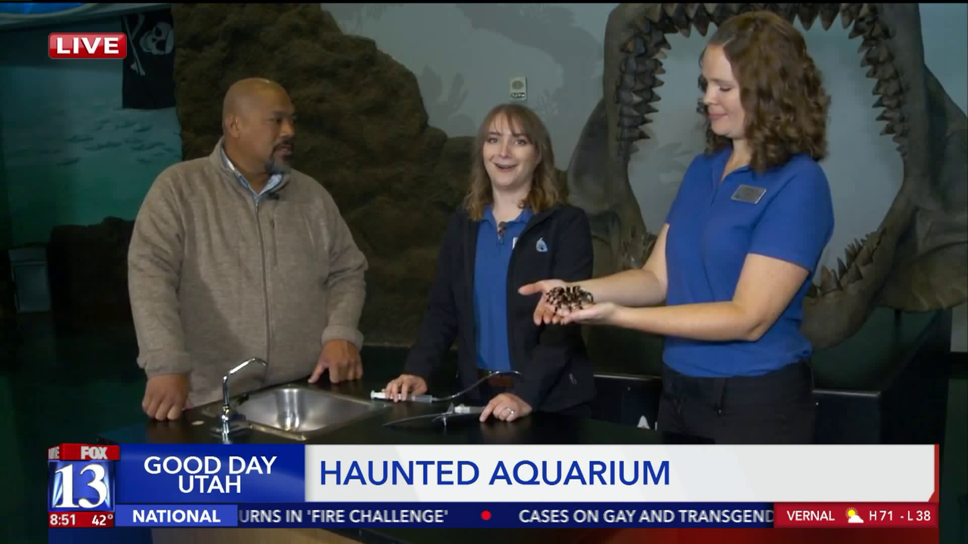 Big Budah visits Loveland Living Planet's Haunted Aquarium